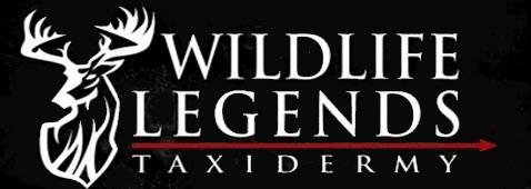 Wildlife Legends Taxidermy